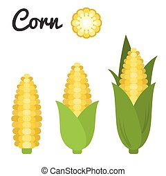 Vector set of fruit and vegetable, corn