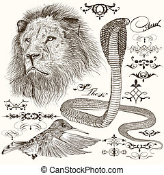 Vector set of hand drawn detailed animals with calligraphic elements