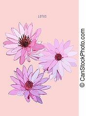 Vector set of hand drawn lotus flowers