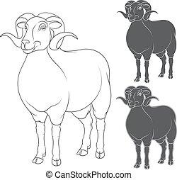 Vector set of illustrations depicting sheep