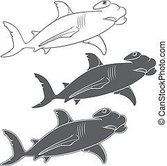 Vector set of illustrations depicting the hammer shark