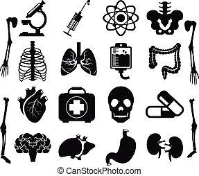 Vector set of internal human organs icons
