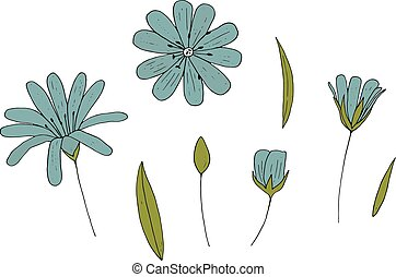 Vector set of isolated flowers on white background.