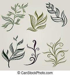 Vector set of leafs design elements