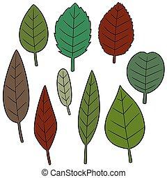vector set of leaves