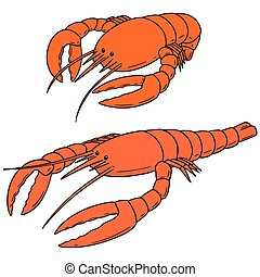 vector set of lobster