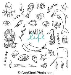 Vector set of marine life.