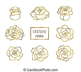 Vector set of outline golden roses, side and top view