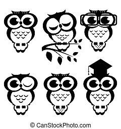 Vector set of owls. Cartoon