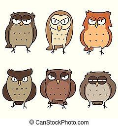vector set of owls