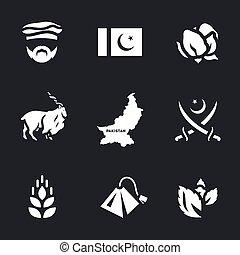 Vector Set of Pakistan Icons.