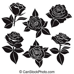 Vector set of Rose buds, stems and leaves with white contour line and silhouettes in black color. Vector illustration for design and tattoo on white background.