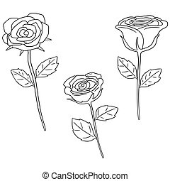 vector set of rose