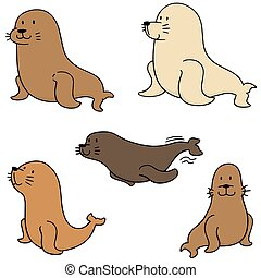 vector set of sea lion