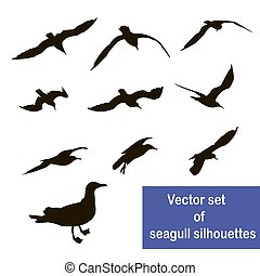 Vector set of seagull silhouettes
