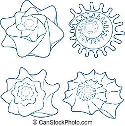 Vector set of seashells.