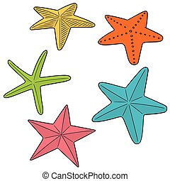 vector set of starfish