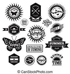Vector Set of Summer typographic re