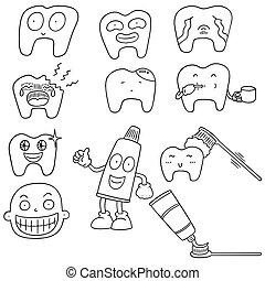vector set of teeth