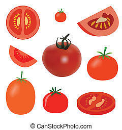 tomato - vector set of tomato on the white background