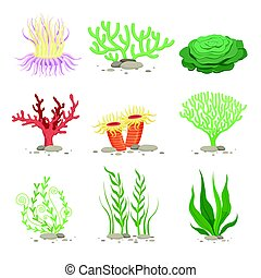 Vector set of underwater plants. Funny illustrations in cartoon style isolate on white