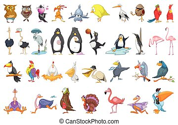 Vector set of various birds illustrations. - Set of various...