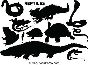 reptiles - vector set of various reptiles