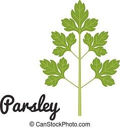 Vector set of vegetable, parsley