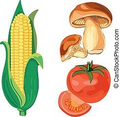 VECTOR set of vegetables. Corn, tomato, mushrooms