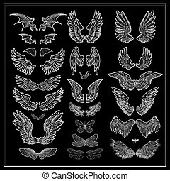 vector set of wings isolated on black background