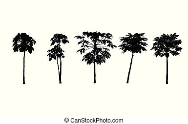 Vector set. papayas trees silhouettes on white background. illustration.