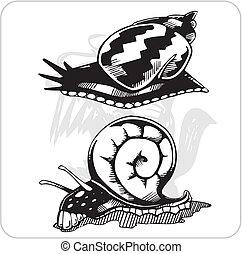 Vector Set - Snails.