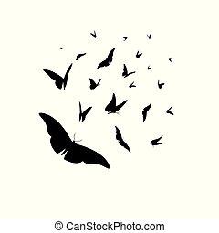vector, set, van, anders, black , silhouettes, van, vlinder