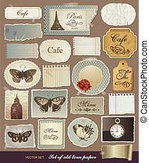 Vector collection of various vintage elements with old papers and the torn edges