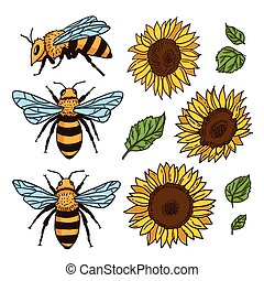 Vector set with bees and sunflowers. Hand drawn illustration