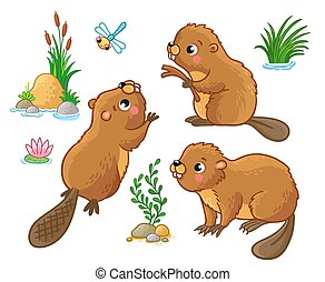 Vector set with isolated beavers in different poses.