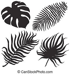 Vector set with tropical exotic leafes
