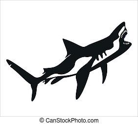 Vector - Shark, tattoo - Predatory shark with an open mouth...