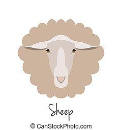 Vector sheep head isolated. Flat, cartoon style object