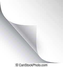 vector sheet of paper with page curl and shadow