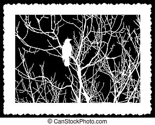 vector silhouette bird on black background