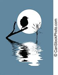 vector silhouette bird on branch