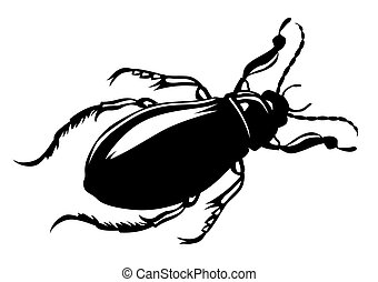 vector silhouette bug on white background