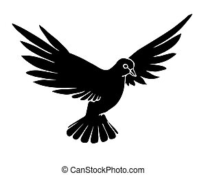 vector silhouette dove on white background