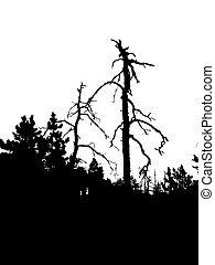 vector silhouette dry tree in wild wood