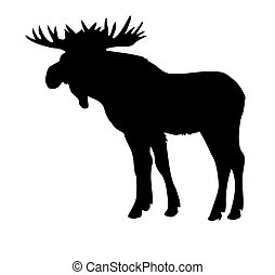 vector silhouette moose isolated on white background
