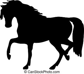 vector silhouette of a horse on a white background