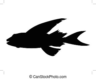flying fish, side view