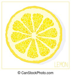 Vector silhouette of lemon slices. Isolated drawing fruit on a white background.