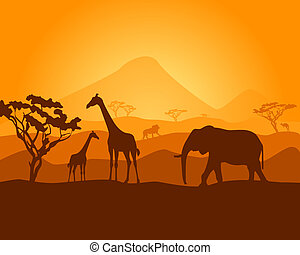 safari - vector silhouette of nature safari with wild...